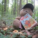 Bärli on Tour: Pilze sammeln mit Hindernissen!