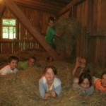 Abenteuerlich übernachten, statt Ferienhaus im Schwarzwald