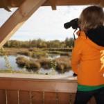 Bärli und Tour: Natur beobachten im Winter ist aufregend
