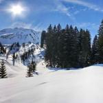 Winter im bayerischen Wald: Mit dem Förster durch den Nationalpark