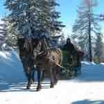 Winterurlaub am Katschberg: Winter-Pony-Welt, Schnee und Ski