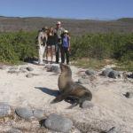 """Urlaub mit Familie: """"Es sind immer wieder die großen Tiere, die begeistern"""""""