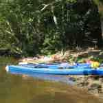Neuland in Sicht! Familien paddeln mit Kanus auf der Weser