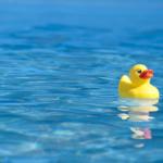 Entenrennen: Das etwas andere Spiel am Kindergeburtstag