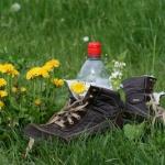 Familienurlaub im Bayerischen Wald: Wandern auf dem Goldsteig mit GPS Track!