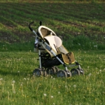 Kostenloser GPS Download! Mit Kindern im Allgäu wandern: Wasserfälle und Reptilien!