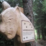 Outdoor-Urlaub in Serfaus-Fiss-Ladis: Expedition zum Wolfsee