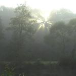 Kostenloser GPS Track: Geheimtipp für das wanderbare Waldviertel!