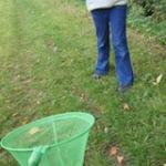 Genial im Herbst und beim Kindergeburtstag: Die Herbst-Schnitzeljagd im Wald oder Park
