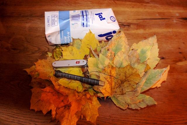 Serie Bastelideen Herbst Eine Herbstlaub Vase