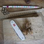 Basteln mit Naturmaterialien: Tic Tac Toe Spiel aus Kastanien