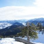 Skitouren mit Kindern? Interview mit dem Tourentipp-Profi Bernhard Ziegler
