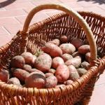 Rezepte mit Kartoffeln: Der Bröselschmarrn