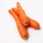 Marmelade kinderleicht gemacht aus Orangen und Karotten