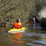 Kanutouren auf der Treene: Perfekt für Familien