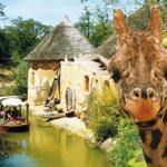Zoo gehts ab! Drei Tipps für tierische Abenteuer