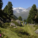 Vom Inntal ins Sellraintal – über den neuen Oberhofer Höhensteig