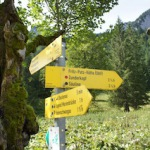 Wanderwege: Welche sind für Kinder geeignet?