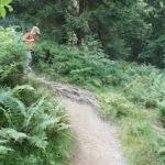 Wandern mit Kindern im Chiemgau: Auf den Geigelstein