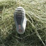 Primigi Bromy im schwäbischen Dschungel getestet