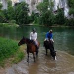 Urlaub auf dem Bauernhof: Biberwatching und Meeresleuchten