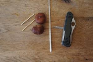 Hier ist das Material um einen Igel aus Kastanien zu basteln.  Foot (c) kinderoutdoor.de