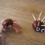 Mit Kastanien basteln: Lustige Igel und Spinnen