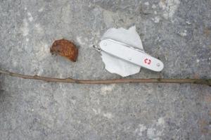 Hier sehr Ihr das Bastelmaterial: Die Schale einer Kastanie, einen dünnen Zweig, ein Stück Papier und ein Taschenmesser.  Foto (c) Kinderoutdoor.de