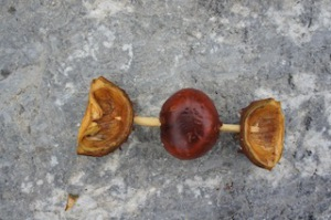 Nun die Kastanien Schalen als Schwimmkörper anbringen.  Foto (c) Kinderoutdoor.de