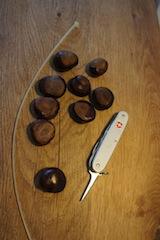 Zum Basteln mit Kastanien benötigt Ihr nur diese wenigen Sachen. Klasse, oder? Foto (c) kinderoutdoor.de