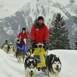 Im Kühtai Skigebiet zum Husky-Workshop mit der Familie