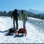 Schlittenfahren in den Alpen mit der Rodel App