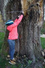 Das Seil für unser Zelt straff festziehen. Foto (c) kinderoutdoor.de