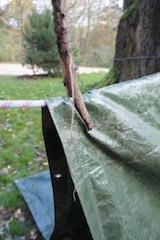 Nun fixiert Ihr die Plane vom Zelt. Foto (c) Kinderoutdoor.de