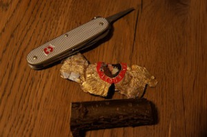 Das ist alles was wir für unsere Holzschnitzerei brauchen: Ein Taschenmesser, Alufolie und ein Stück frisches Haselnussholz.  Foto (c) Kinderoutdoor.de