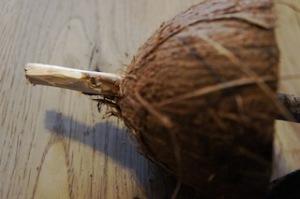 Jetzt das Stöckchen durch die Kokosnuss Hälfte stecken.  Foto (c) kinderoutdoor.de
