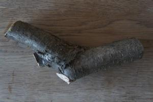 Basteln wir mit Kindern einen Rotorenvogel aus diesem Stück Holz. Foto (c) Kinderoutdoor.de