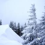 Mountain Hardwear Diverter Bib: Einer für (fast) alles!