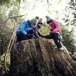 Regatta und Dare2b packen die Kinder warm ein