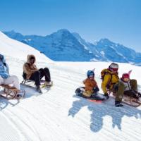 Schlitteln, sagen die Schweizer zum Rodeln. 1.600 Höhenmeter warten auf der längesten Rodelbahn Europas.  foto (c) christof Sonderegger, switzerland tourism