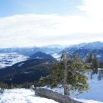 Berghaus Freeride Kombination: Lichtblick bei der totalen Blamage