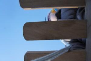 Auf der Krusenkoppel in Kiel ist das Schlitten fahren ein Vergnügen.  Foto (c) kinderoutdoor.de