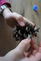 Nun befüllen die Kinder den Vogelfutter-Zapfen mit Erdnüssen.  Foto (c) kinderoutdoor.de