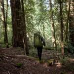 Boreas Rucksäcke: Stylische Alleskönner aus Kalifornien