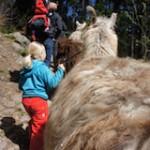 Outdoor Ziele für die Familie im Frühjahr: Drei Geheimtipps!