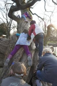 Alles in die Wanten! Bei der Schnitzeljagd Schatzinsel ist auch Teamgeist gefordert.  Foto (c) kinderoutdoor.de