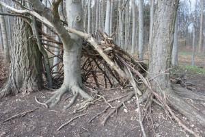 Die eigenen vier Wände! Kinder lieben es im Wald Indianer zu spielen.  Foto (c) kinderoutdoor.de