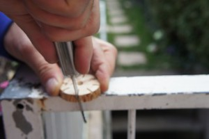 Nun sägt Ihr bei jedem Strich das Holz ein.  Foto (c) kinderoutdoor.de