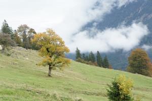 Ganz, ganz weit nach oben führt uns die Hüttenwanderung: Ins Himmelreich! Foto (c) kinderoutdoor.de