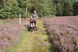 Die Lüneburger Heide ist einen Besuch wert. Familien mit kleineren Kindern wandern auf dem Märchenweg im Kleckerwald bei Jesteburg.  Foto (c) kinderoutdoor.de